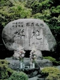 桜花の碑の写真