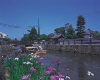 堀川遊覧船の写真