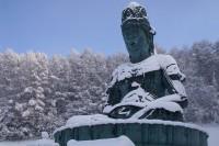 昭和大仏 青龍寺の写真