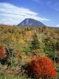 羅臼岳の写真
