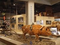 牛の博物館