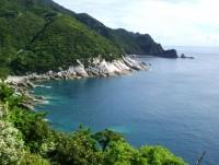 屋久島の写真