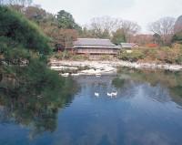 楽寿園の写真