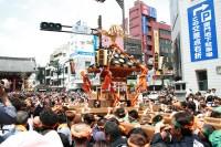浅草三社祭の写真