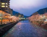 あつみ温泉(温海川河畔)の写真