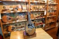 マンドリンの音の博物館