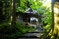 十和田神社の写真
