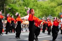 ひろしまフラワーフェスティバルの写真