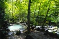 乗鞍高原温泉の写真