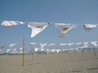 砂浜美術館の写真