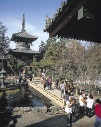 霊山寺(徳島)の写真
