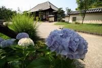 法華寺(奈良)の写真