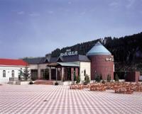 酒泉の杜の写真