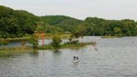 亀山湖(亀山ダム)