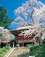 塩竈神社の写真