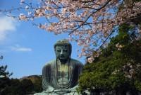 高徳院(鎌倉大仏)の写真