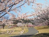 あづみ野池田クラフトパークの写真