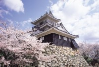 浜松城の写真