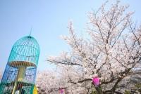 串山公園の写真
