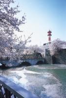 福井城址の写真