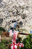 慈眼院(神奈川)