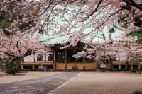 光明寺(天照山)