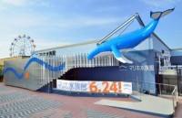 マリホ水族館の写真