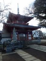 新井薬師 梅照院の写真