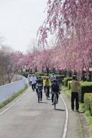 サイクリングロード(利根川自転車道線)
