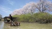 城下町 大聖寺川流し舟