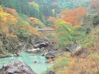 三波石峡の写真