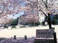 挙母城隅櫓跡(桜城)