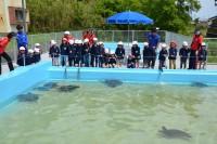むろと廃校水族館の写真