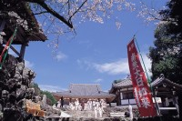 大日寺(高知)