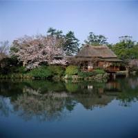 神野公園の写真