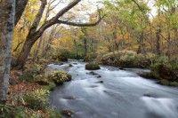 奥入瀬渓流(石ヶ戸)の写真