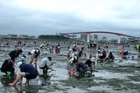 木更津海岸(中の島公園)