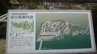 生田緑地「ばら苑」