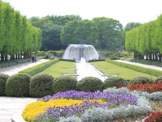 国営昭和記念公園の写真