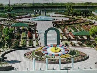 よしうみバラ公園の写真