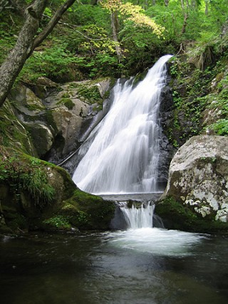宇津江四十八滝県立自然公園の写真