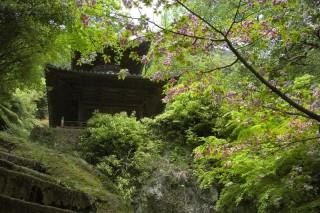 弥谷寺の写真