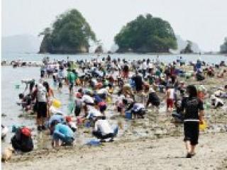 向井黒の浜海岸の写真