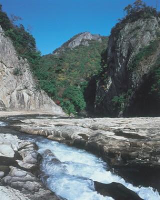 断魚渓の写真