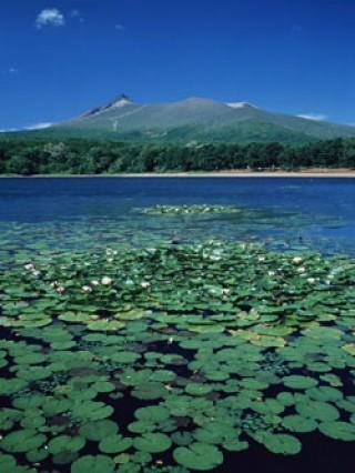 北海道駒ケ岳の写真