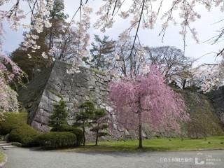 盛岡城跡公園(岩手公園)の写真