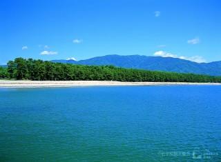高田松原の写真