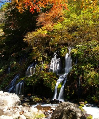 吐竜の滝の写真