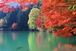 四尾連湖の写真