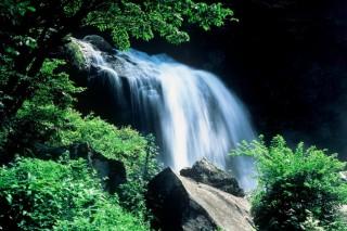 精進ヶ滝の写真